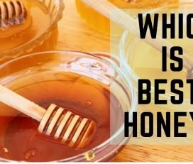 Bharat's Sidr Honey