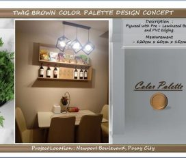 Customized Shelves